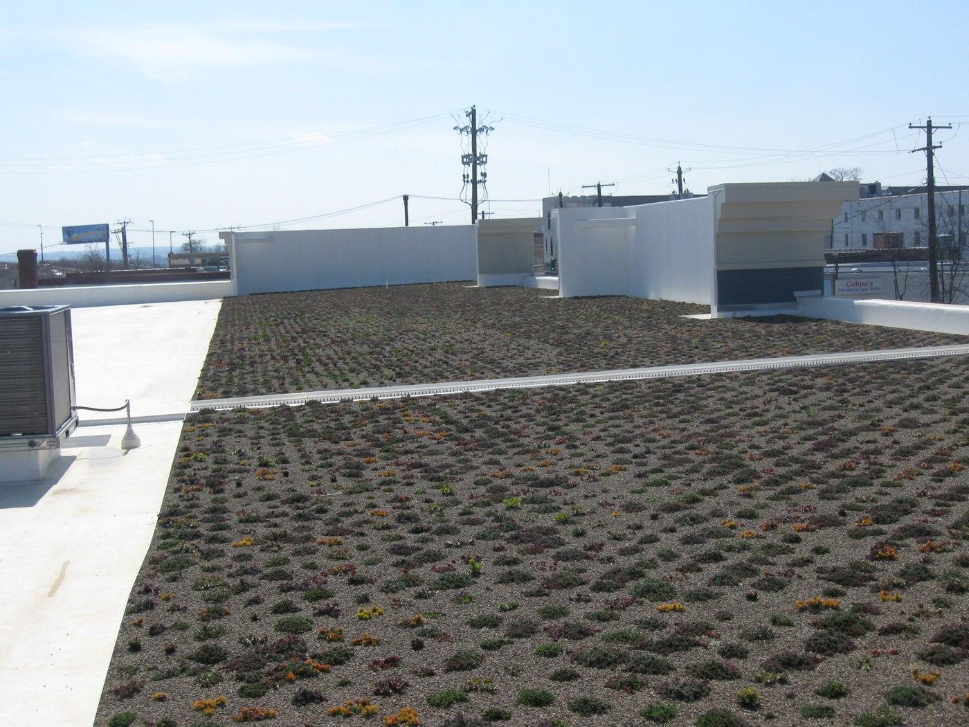 EYA Arts District Hyattsville Green Roof