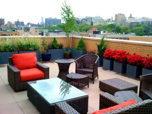 Rooftop Gardening Tips