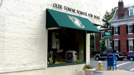 Olde Towne School for Dogs Offers Everything for the Pet Lover (Cats, Too)