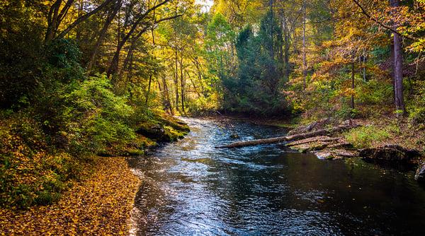Cabin John Regional Park scene in the Fall