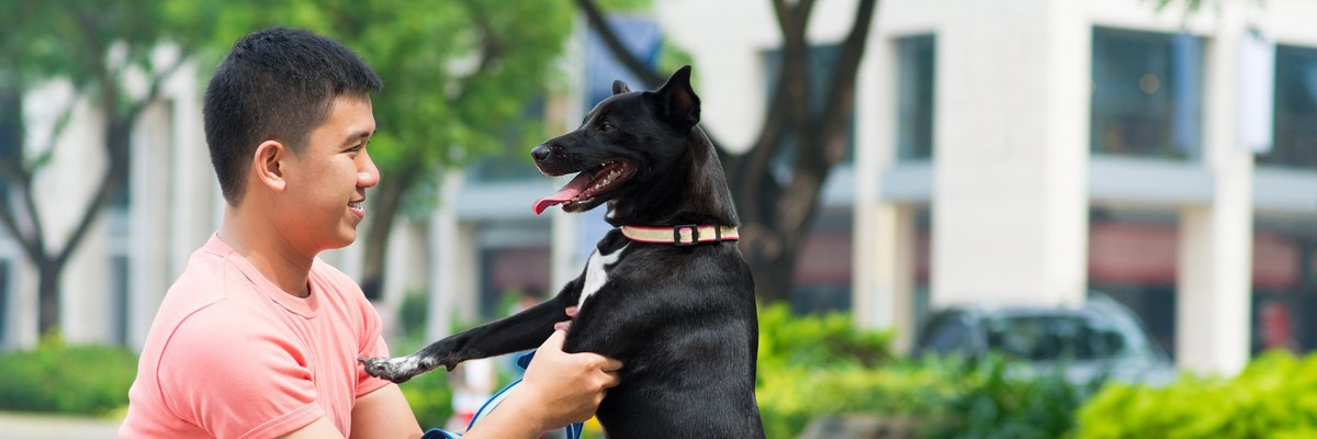 Urban Living Tips for People with Pets